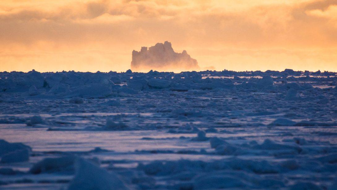 Sea Ice Greenland: la web série